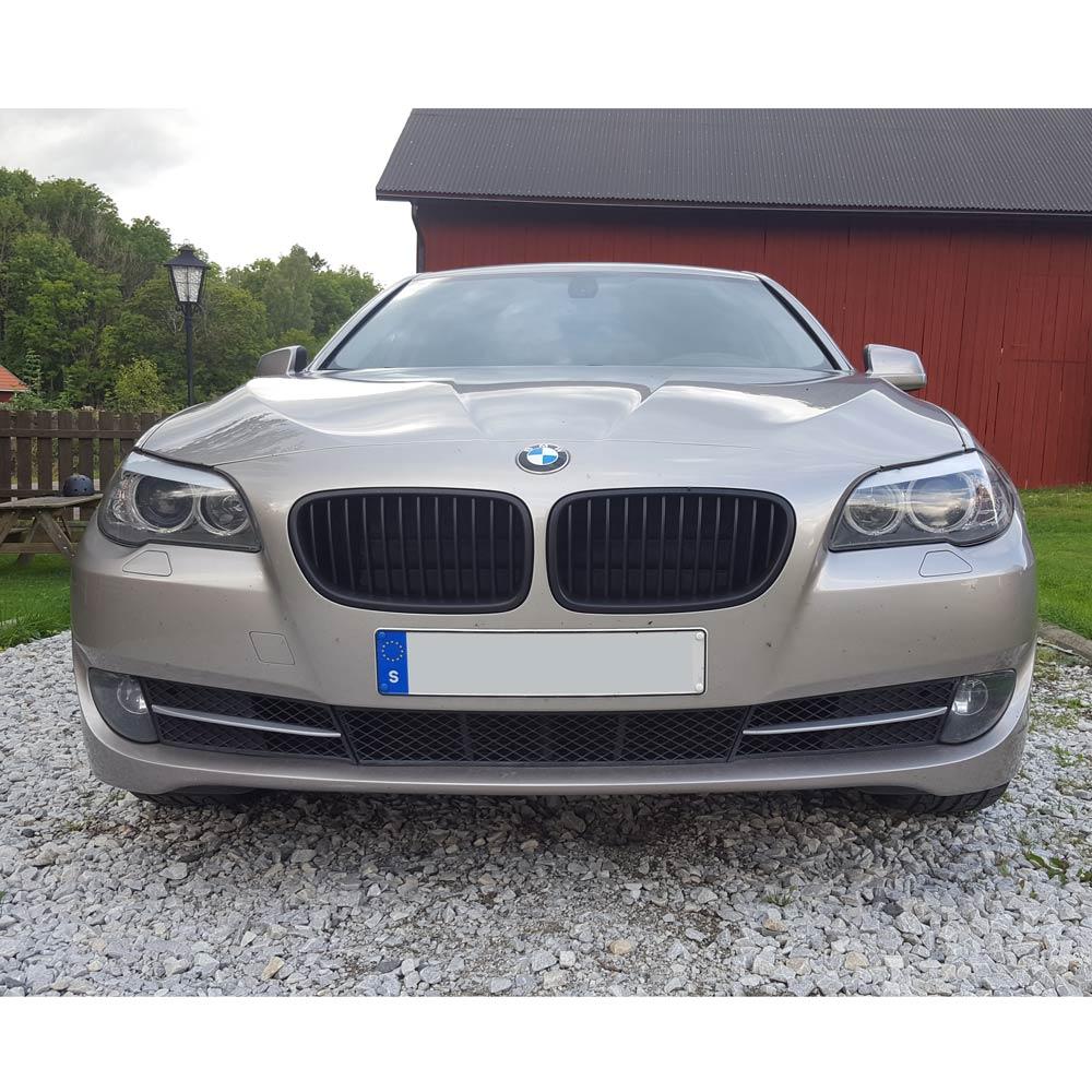 Mattsvarta njurar BMW