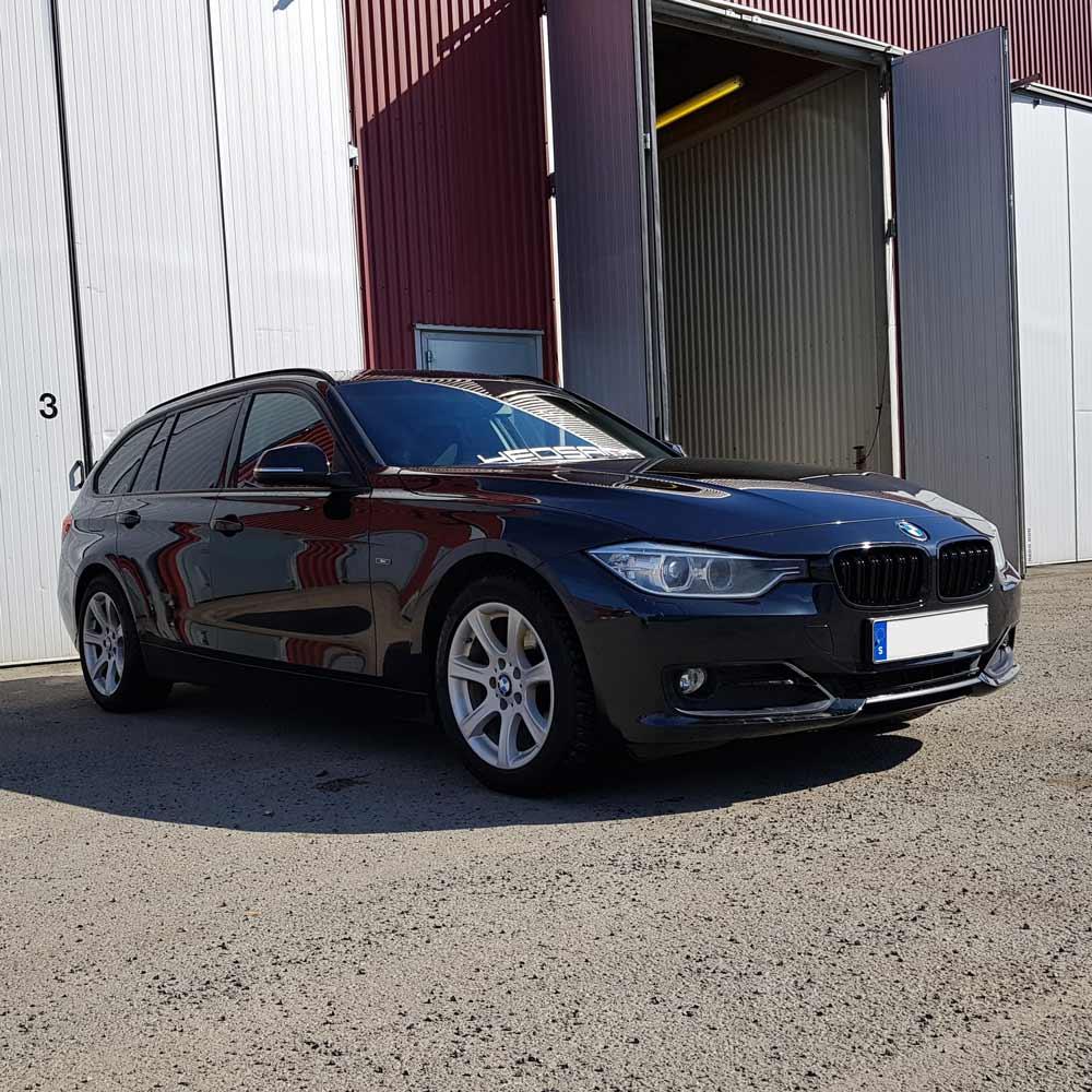Blanksvarta Njurar BMW F30/F31