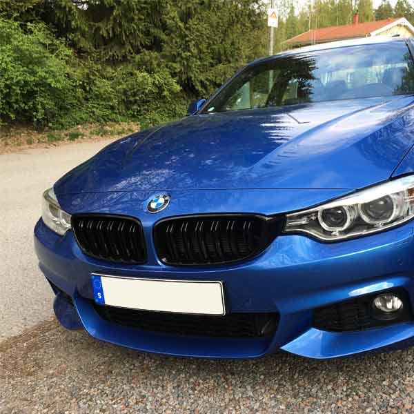Blanksvarta Njurar BMW F32